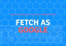 menggunakan google search console untuk fetch as google